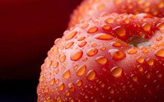 Обои фрукты, яблоки, спелые, красные, капли, вода, макро