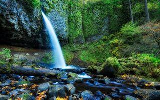 Бесплатные фото гора,река,водопад,камни,мох,деревья,трава