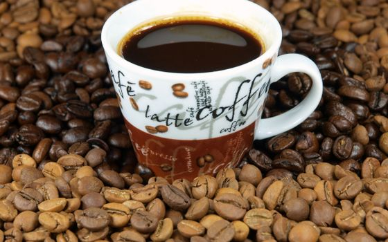 Photo free coffee, coffee beans, cup