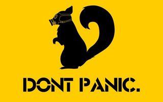Фото бесплатно dont panic, желтый фон, белка, противогаз, минимализм