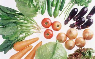 Бесплатные фото морковь,помидоры,капуста,баклажаны,огурцы,петрушка,еда