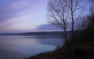 Бесплатные фото озеро,река,вода,рассвет,деревья,лес,кора
