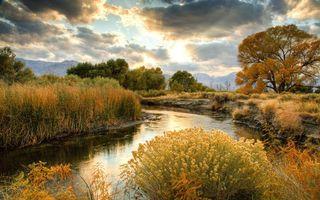 Бесплатные фото река, небо, облака, вода, трава, солнце, природа