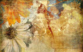 Обои цвета, бумага, текстура, цветы, лепестки, рисунок, разное