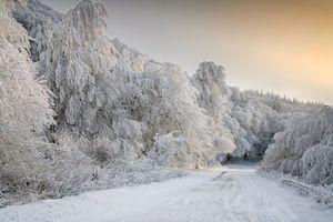 Заставки зима, снег, дорога