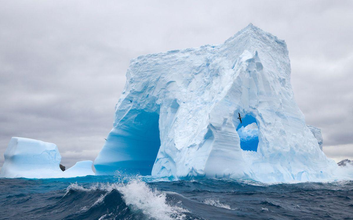 Фото бесплатно айзберг, вода, лід, море, небо, чайки, білий, сніг, океан, пливе, пейзажи, природа, природа