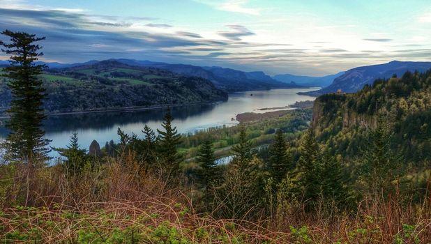 Фото бесплатно Columbia Gorge, река, лес, деревья, горы, пейзаж