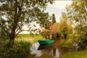 Бесплатные фото Форарльберг, Австрия, река, деревья, лодка, природа