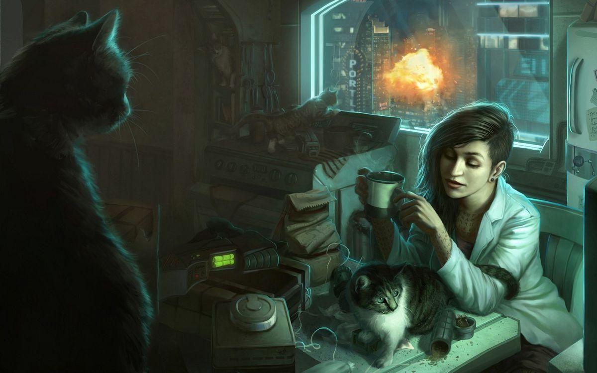 Обои коты, кабинет, работа, взрыв, огонь, девушка, прическа, стол, пакет, кружка, чашка, аппаратура, разное на телефон | картинки разное