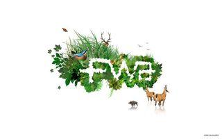 Фото бесплатно трава, картинка, рисунок