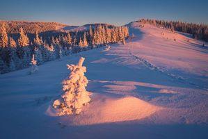 Заставки зима, закат, снег