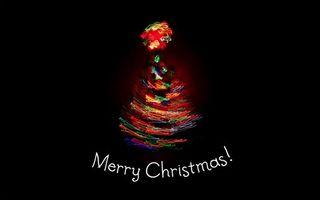 Бесплатные фото ель, holiday, свет, елка, новый год, огни, new year