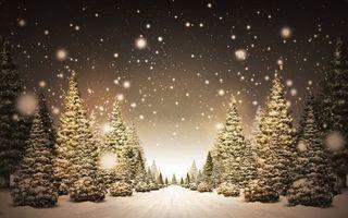 Бесплатные фото елки,снег,тропинка,вечер,свет,рендеринг