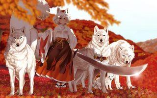 Фото бесплатно девочка, стая, волки