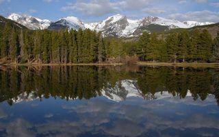Фото бесплатно камни, лес, высота