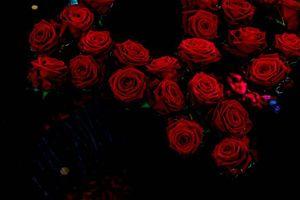 Бесплатные фото роза,розы,цветы,флора,букет,чёрный фон