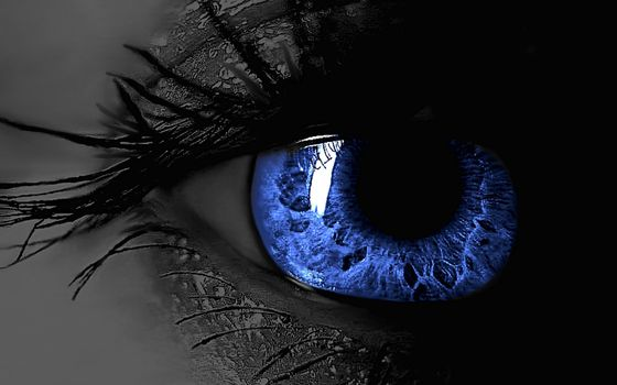 Photo free blue female eye, eyelashes, pupil