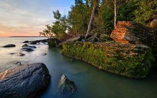 Фото бесплатно волны, природа, деревья