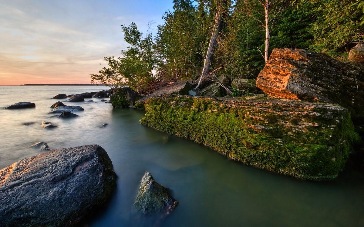Фото бесплатно солнце, лучи, небо, горизонт, мох, камни, река, волны, море, океан, вода, деревья, кора, природа, пейзажи, пейзажи