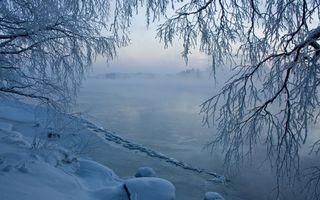 Бесплатные фото зима,деревья,иней,снег,река,лед,дымка
