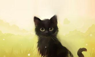 Бесплатные фото арт,котенок,apofiss,кот,черный,трава,кошка