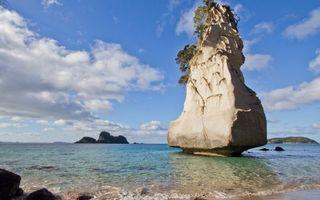Бесплатные фото камень,скала,деревья,море,океан,вода,волны