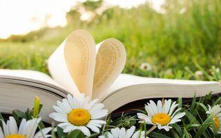 Бесплатные фото поле,ромашки,книга,страницы,сердечко,цветы,природа