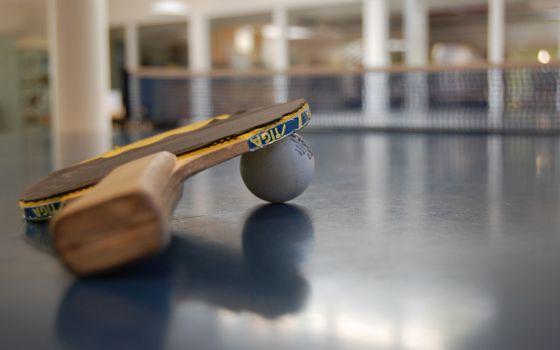 Фото бесплатно ракетка, теннис, настольный, шарик, сетка, стол, спортзал, деревянная, ручка, поверхность, игры, спорт