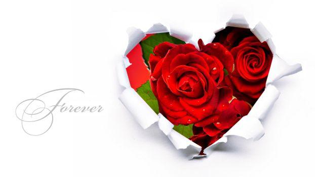 Бесплатные фото розы,букет,сердце,надпись,красные,лепестки,аромат,цветы