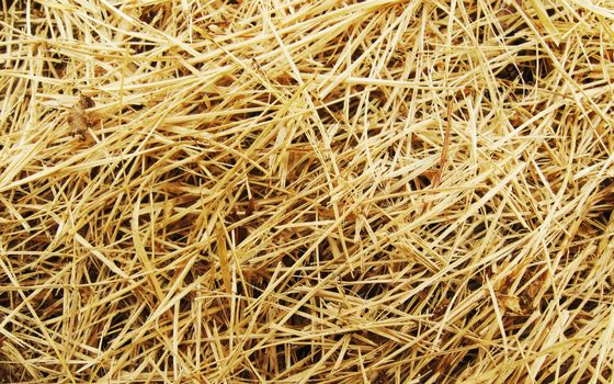 Photo free straw, haystack, hay