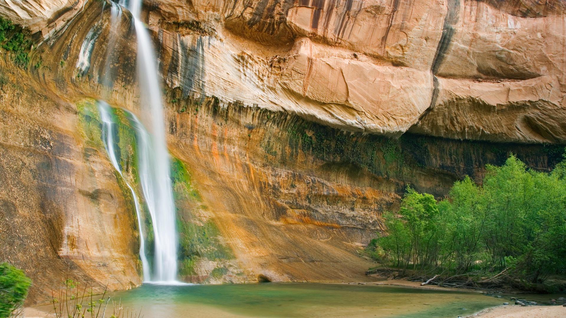 скала, мох, водопад