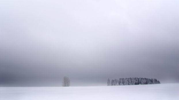 Фото бесплатно поле, небо, зима