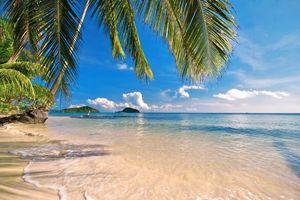 Бесплатные фото тропики,море,пляж,остров,пейзажи