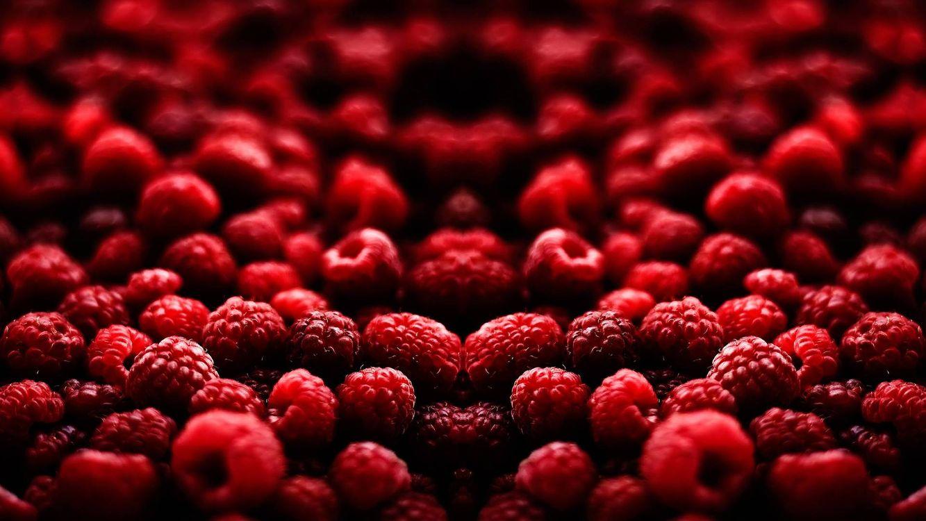 Фото бесплатно спелая, красная, ягода - на рабочий стол