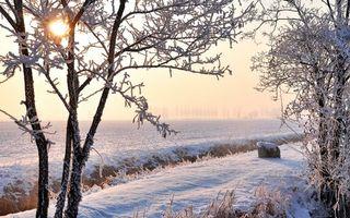 Бесплатные фото зима,снег,поле,арык,деревья,иней,мороз