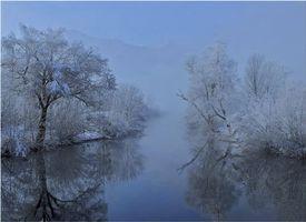 Бесплатные фото зима,река,деревья,пейзаж