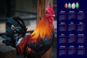 Бесплатные фото 2017 год Красного Огненного Петуха,Петух символ 2017 года,Петух,птица,календарь на 2017 год