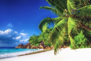 Фото бесплатно остров, море, океан