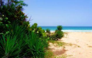Заставки пляж, песок, океан