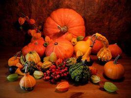Фото бесплатно тыквы, овощи, натюрморт