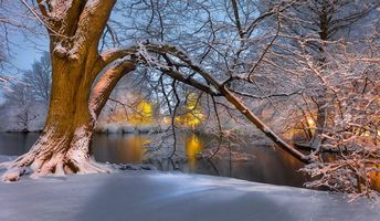 Бесплатные фото зима, река, деревья, закат, парк, пейзаж