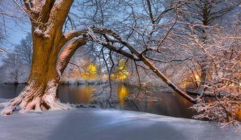 Фото бесплатно река, парк, закат