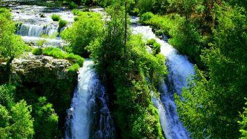 Бесплатные фото водопад,река,лес,деревья