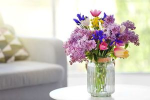 Photo free lilac, flowers, tulips