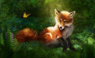 Бесплатные фото лиса,бабочка,art