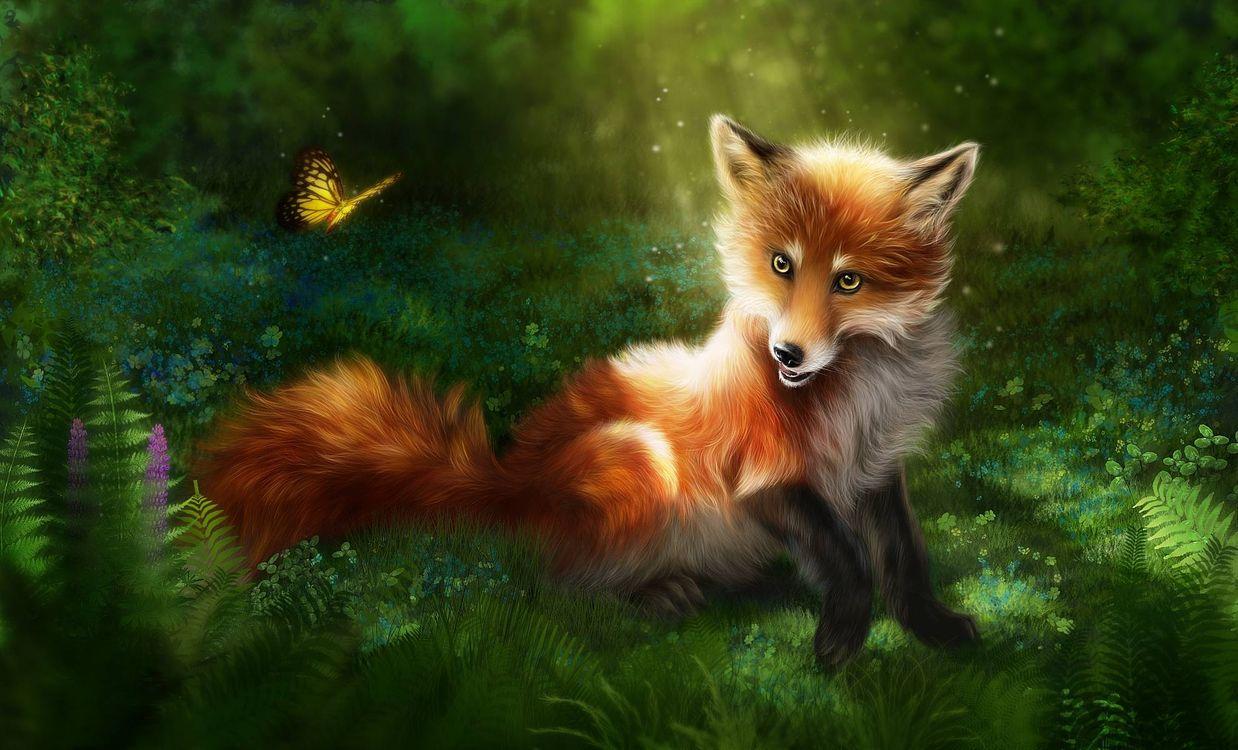 Фото бесплатно лиса, бабочка, art, рендеринг