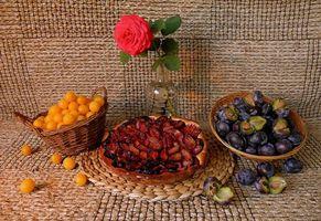 Фото бесплатно роза, фрукты, натюрморт