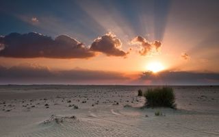 Бесплатные фото пустыня,песок,трава,горизонт,закат,солнце,облака