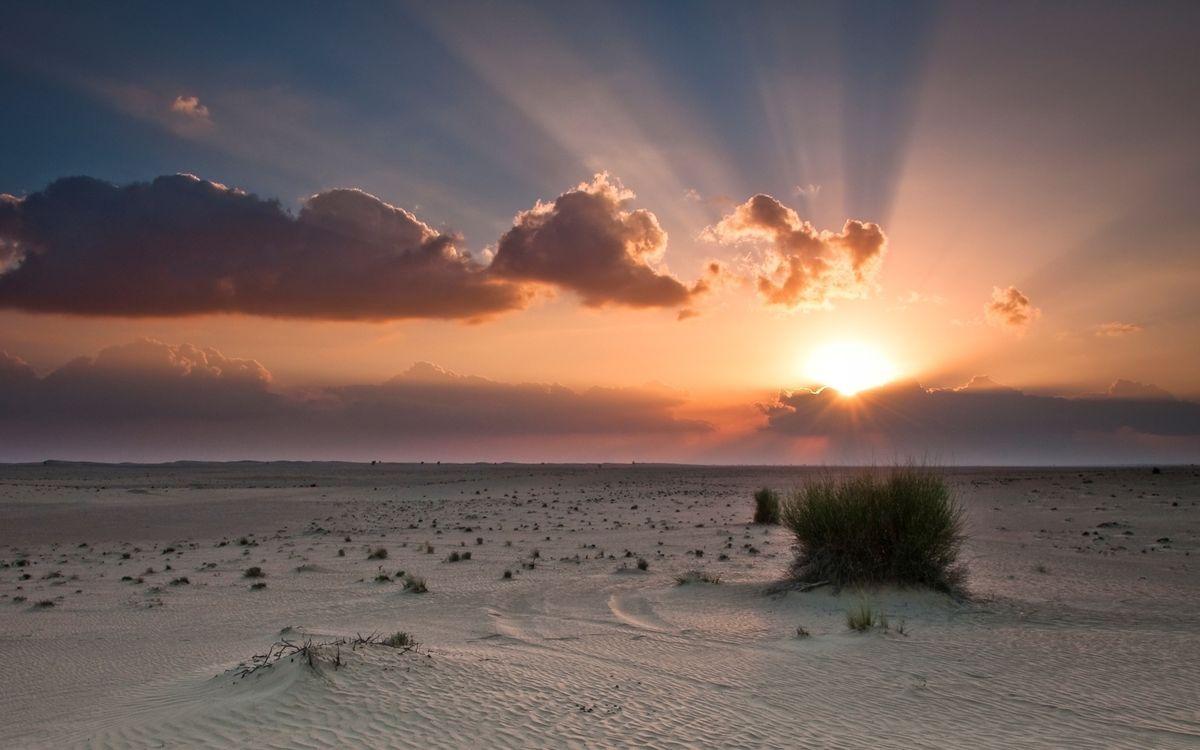 Фото бесплатно пустыня, песок, трава - на рабочий стол