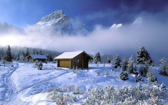 Фото бесплатно зима, снег, тропинки